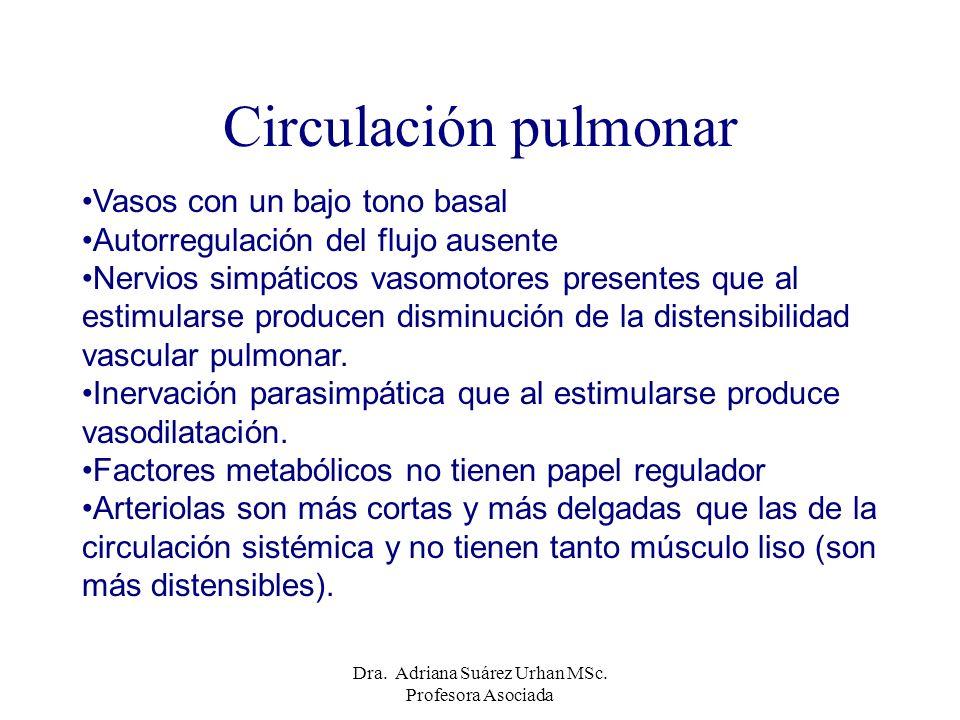 Circulación pulmonar Vasos con un bajo tono basal Autorregulación del flujo ausente Nervios simpáticos vasomotores presentes que al estimularse produc