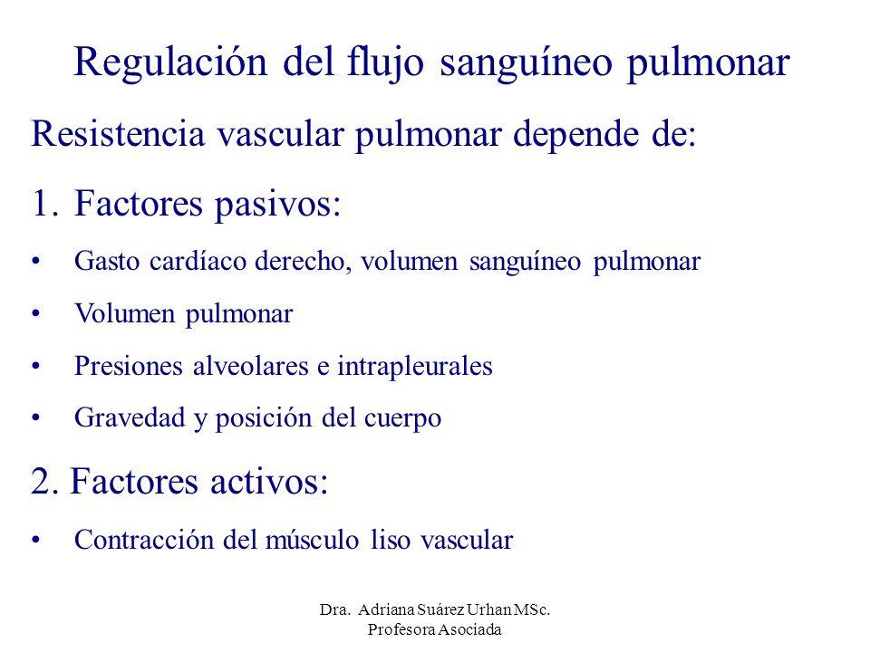 Regulación del flujo sanguíneo pulmonar Resistencia vascular pulmonar depende de: 1.Factores pasivos: Gasto cardíaco derecho, volumen sanguíneo pulmon