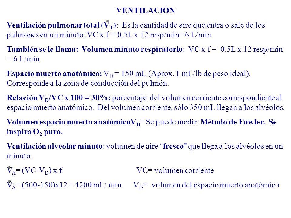 VENTILACIÓN Ventilación pulmonar total (V T ): Es la cantidad de aire que entra o sale de los pulmones en un minuto. VC x f = 0,5L x 12 resp/min= 6 L/