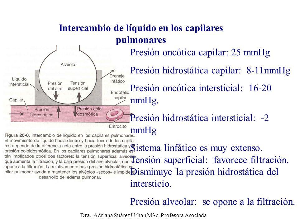 Intercambio de líquido en los capilares pulmonares Presión oncótica capilar: 25 mmHg Presión hidrostática capilar: 8-11mmHg Presión oncótica interstic