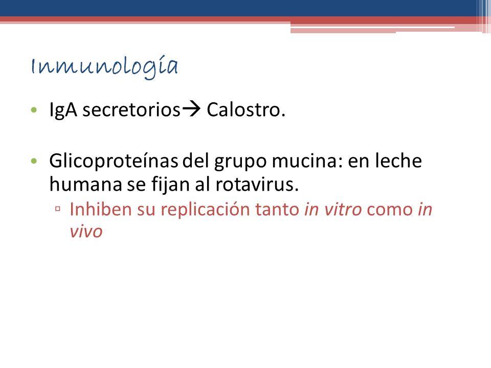 Inmunología IgA secretorios Calostro.
