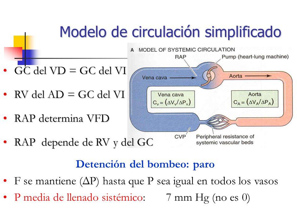 GC del VD = GC del VIGC del VD = GC del VI RV del AD = GC del VIRV del AD = GC del VI RAP determina VFDRAP determina VFD RAP depende de RV y del GCRAP