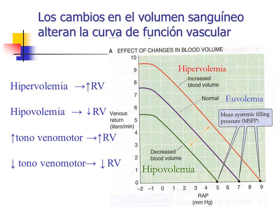 Los cambios en el volumen sanguíneo alteran la curva de función vascular Hipervolemia RV Hipovolemia RV tono venomotor RV Hipervolemia Euvolemia Hipov