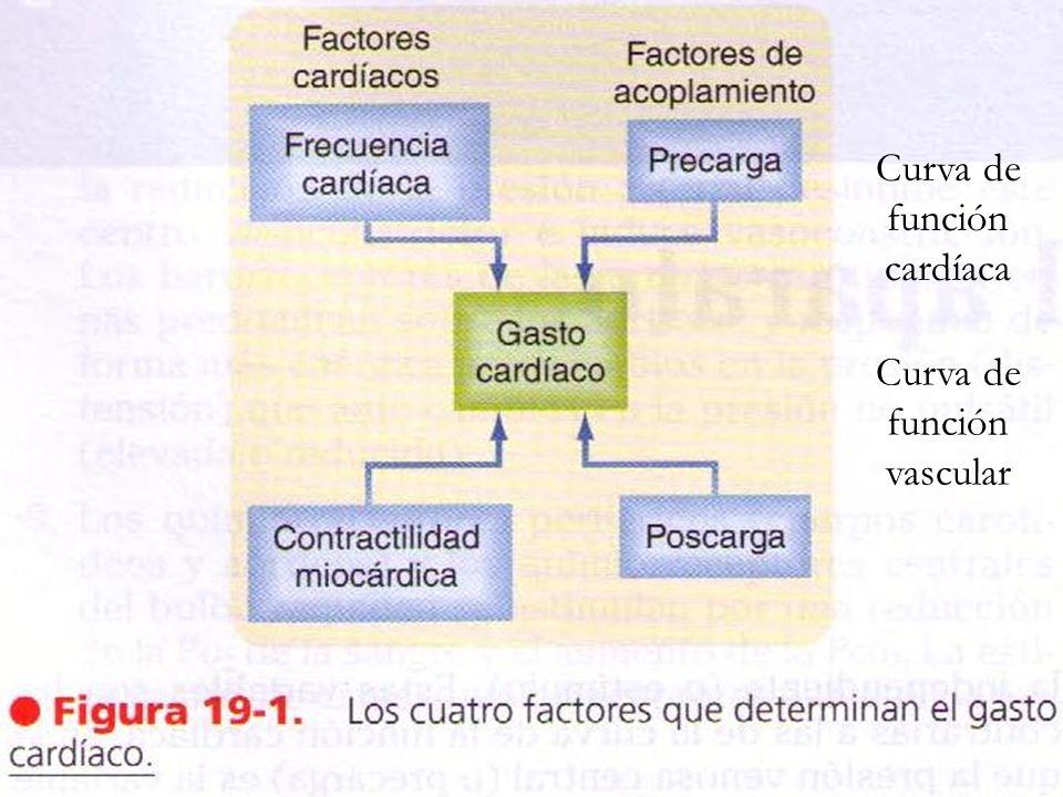 Curva de función cardíaca Curva de función vascular