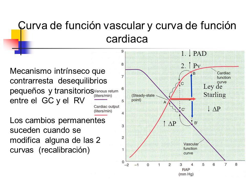 Curva de función vascular y curva de función cardiaca 1.PAD 2.Pv Ley de Starling ΔP Mecanismo intrínseco que contrarresta desequilibrios pequeños y tr
