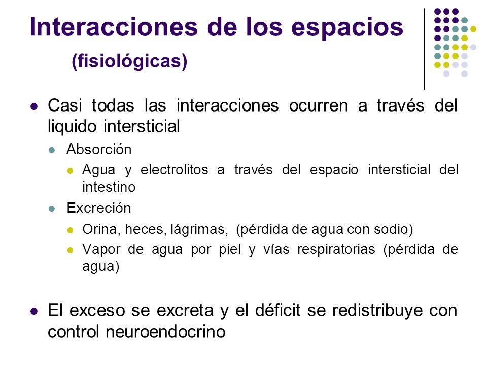 Interacciones de los espacios (fisiológicas) Casi todas las interacciones ocurren a través del liquido intersticial Absorción Agua y electrolitos a tr