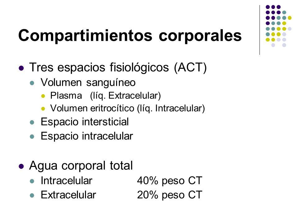 Compartimientos corporales Tres espacios fisiológicos (ACT) Volumen sanguíneo Plasma (líq. Extracelular) Volumen eritrocítico (líq. Intracelular) Espa