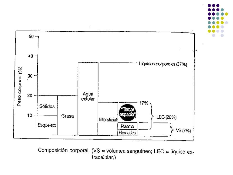 Composición corporal Ej.: Hombre de 80 Kg. 50 Kg.