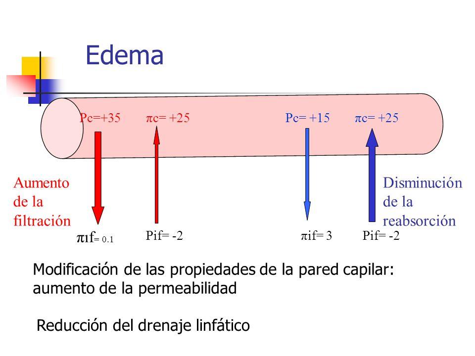 Edema Pc=+35πc= +25Pc= +15πc= +25 πif = 0.1 Pif= -2πif= 3Pif= -2 Aumento de la filtración Disminución de la reabsorción Modificación de las propiedade