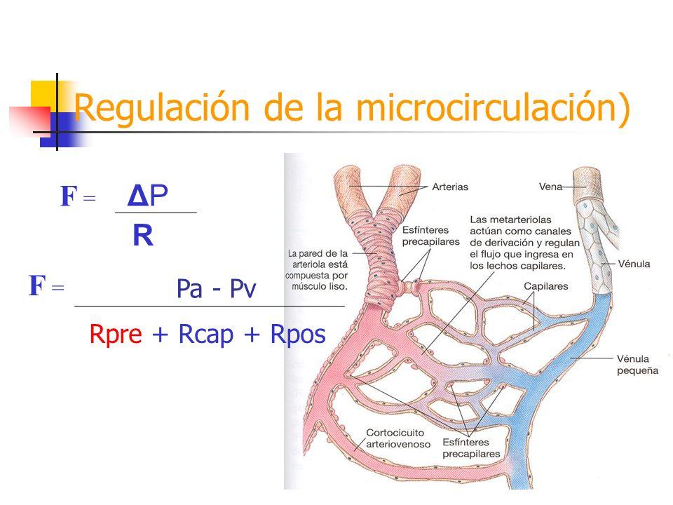 Regulación de la microcirculación) F = ΔPΔP R Pa - Pv Rpre + Rcap + Rpos