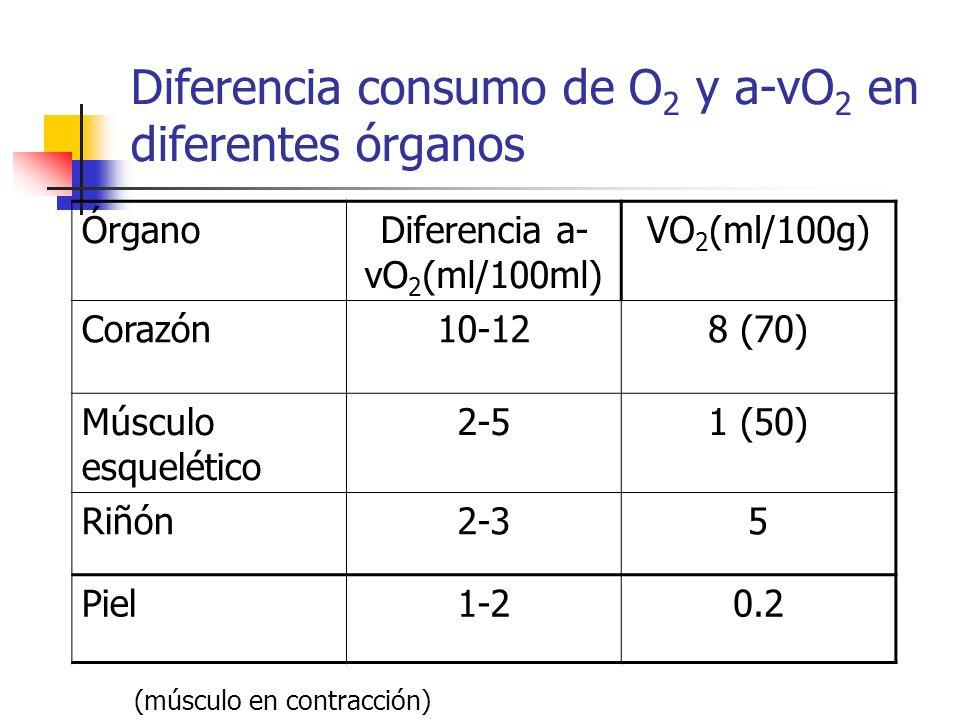 Diferencia consumo de O 2 y a-vO 2 en diferentes órganos ÓrganoDiferencia a- vO 2 (ml/100ml) VO 2 (ml/100g) Corazón10-128 (70) Músculo esquelético 2-5