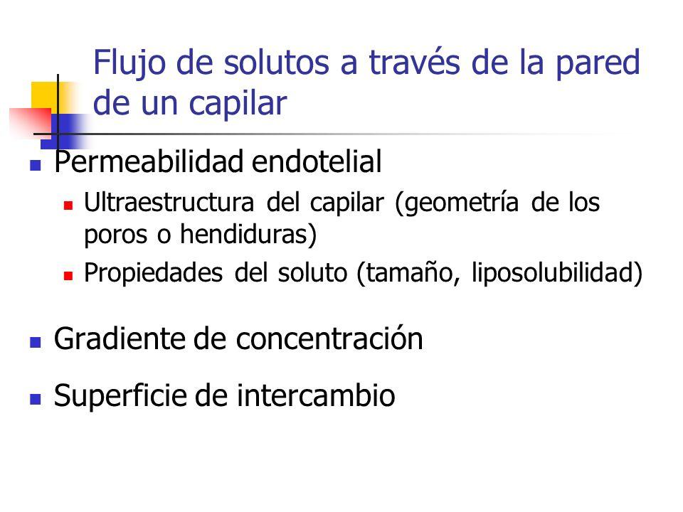 Flujo de solutos a través de la pared de un capilar Permeabilidad endotelial Ultraestructura del capilar (geometría de los poros o hendiduras) Propied