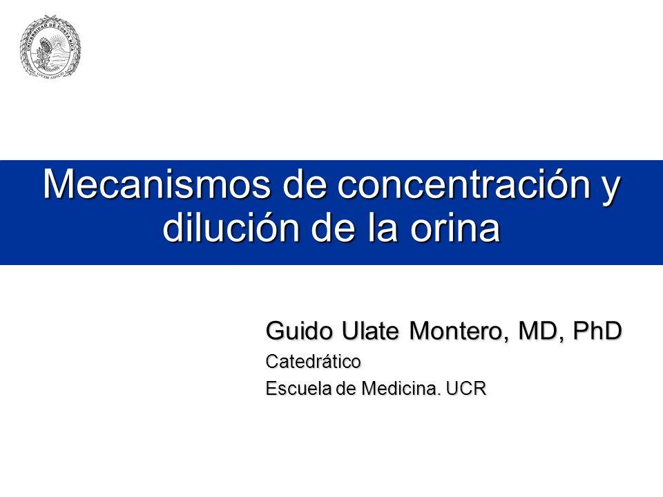 Mecanismos de concentración y dilución de la orina Guido Ulate Montero, MD, PhD Catedrático Escuela de Medicina. UCR
