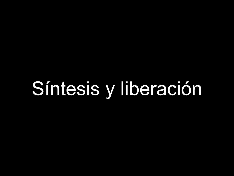 Síntesis y liberación