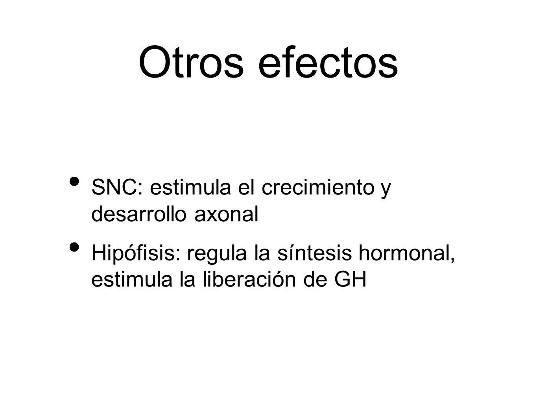 Otros efectos SNC: estimula el crecimiento y desarrollo axonal Hipófisis: regula la síntesis hormonal, estimula la liberación de GH