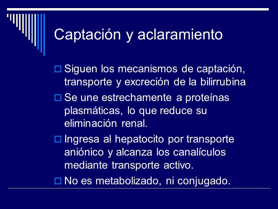 Captación y aclaramiento Siguen los mecanismos de captación, transporte y excreción de la bilirrubina Se une estrechamente a proteínas plasmáticas, lo