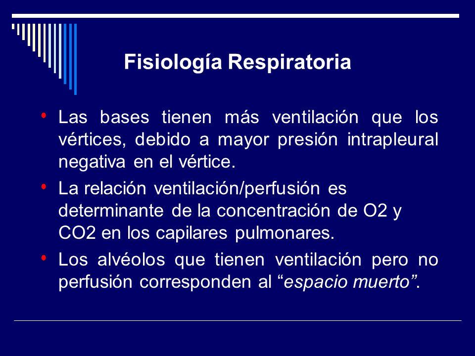 Fisiología Respiratoria Las bases tienen más ventilación que los vértices, debido a mayor presión intrapleural negativa en el vértice. La relación ven