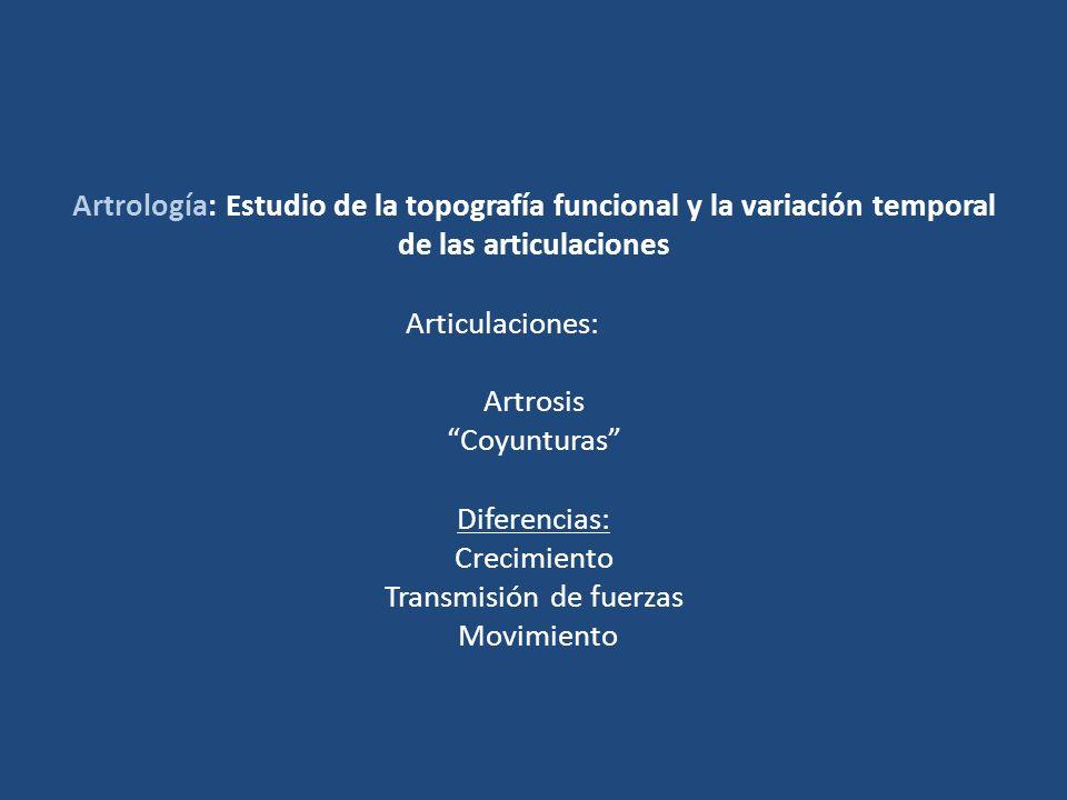 Artrología: Estudio de la topografía funcional y la variación temporal de las articulaciones Articulaciones: Artrosis Coyunturas Diferencias: Crecimie