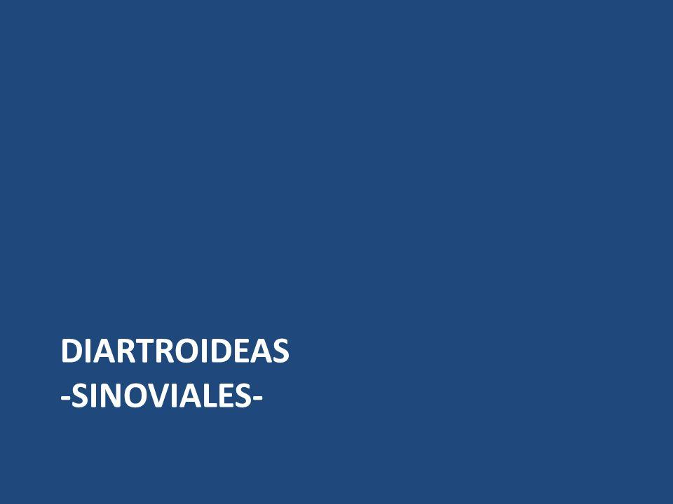 DIARTROIDEAS -SINOVIALES-