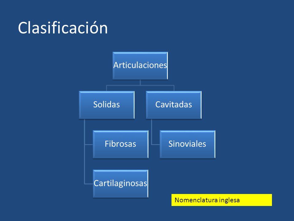 Clasificación Articulaciones Solidas Fibrosas Cartilaginosas Cavitadas Sinoviales Nomenclatura inglesa