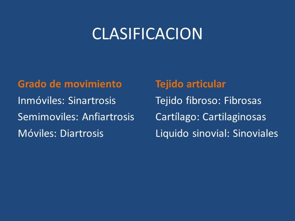 CLASIFICACION Grado de movimiento Inmóviles: Sinartrosis Semimoviles: Anfiartrosis Móviles: Diartrosis Tejido articular Tejido fibroso: Fibrosas Cartí
