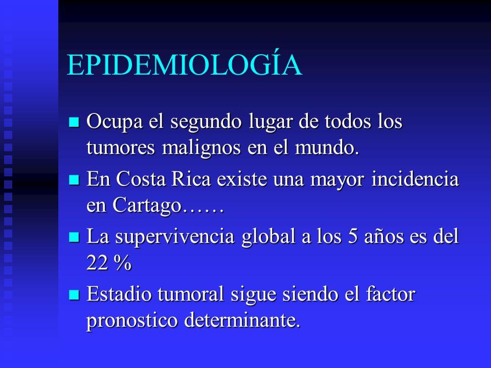 Epidemiología: Adenocarcinoma Mayor frecuencia en hombres > 40 años relación 2:1 Incidencia alta en Japón, Chile, Islandia, Costa Rica.