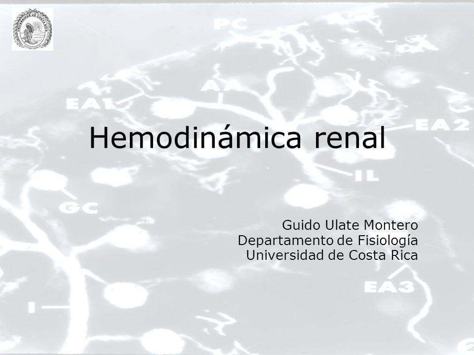 Hemodinámica renal –Introducción –Parámetros hemodinámicos –Presiones a lo largo del lecho vascular –Medición del FPR –Extracción de oxígeno –Autorregulación –Control de la circulación