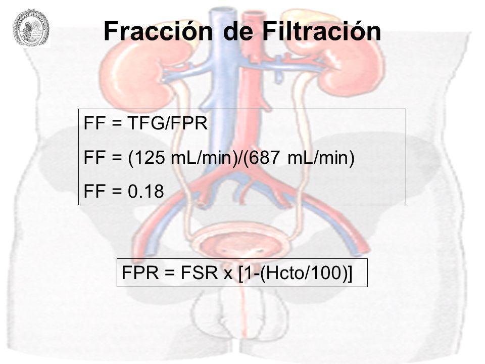 Presiones hidrostáticas a lo largo del lecho vascular renal