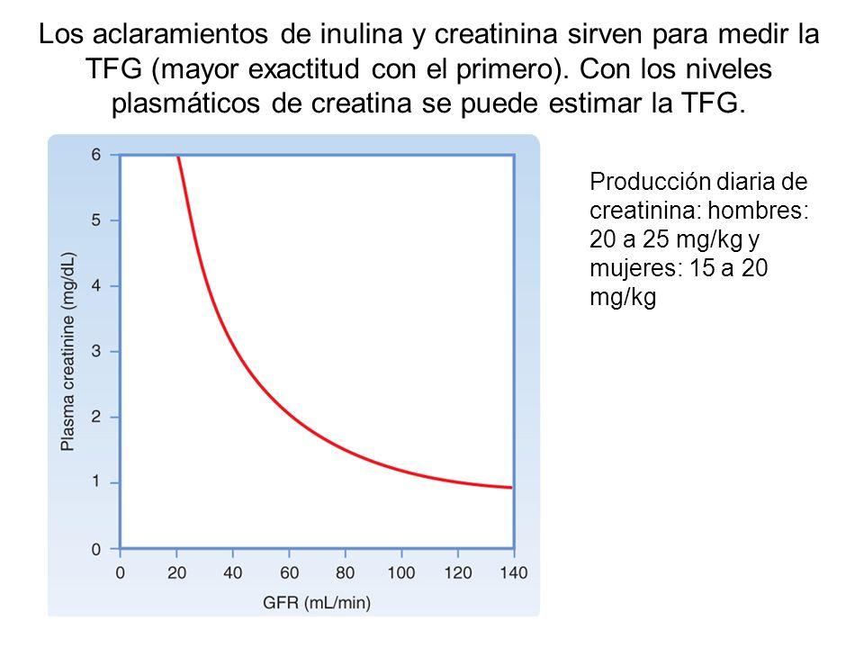 Los aclaramientos de inulina y creatinina sirven para medir la TFG (mayor exactitud con el primero). Con los niveles plasmáticos de creatina se puede