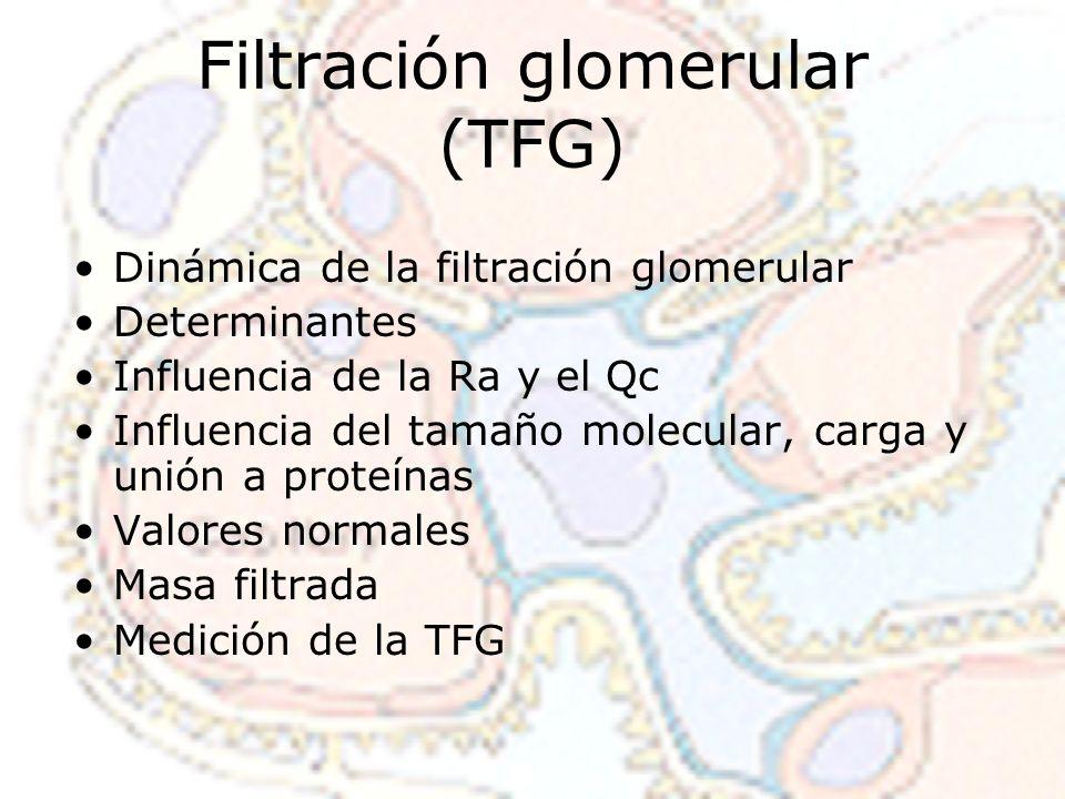 Filtración glomerular (TFG) Dinámica de la filtración glomerular Determinantes Influencia de la Ra y el Qc Influencia del tamaño molecular, carga y un