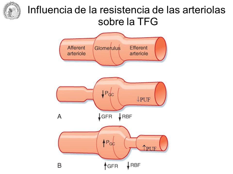 PUF Influencia de la resistencia de las arteriolas sobre la TFG
