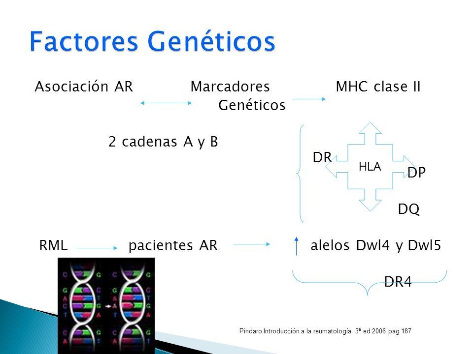 Asociación AR Marcadores MHC clase II Genéticos 2 cadenas A y B DR DP DQ RML pacientes AR alelos Dwl4 y Dwl5 DR4 HLA Pindaro Introducción a la reumato