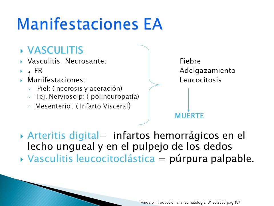 VASCULITIS Vasculitis Necrosante: Fiebre FR Adelgazamiento Manifestaciones: Leucocitosis Piel: ( necrosis y aceración) Tej. Nervioso p: ( polineuropat