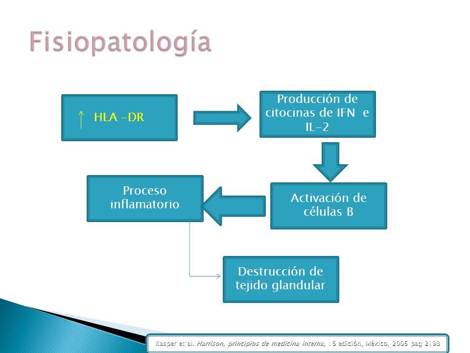 HLA -DR Activación de células B Producción de citocinas de IFN e IL-2 Proceso inflamatorio Destrucción de tejido glandular Kasper et al. Harrison, pri