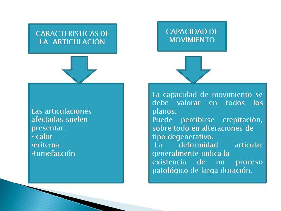 Las articulaciones afectadas suelen presentar: calor eritema tumefacción La capacidad de movimiento se debe valorar en todos los planos. Puede percibi