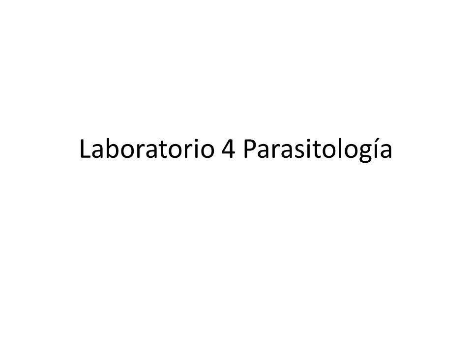Laboratorio 4 Parasitología