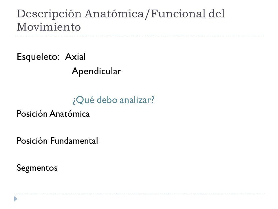 Descripción Anatómica/Funcional del Movimiento Esqueleto: Axial Apendicular ¿Qué debo analizar? Posición Anatómica Posición Fundamental Segmentos