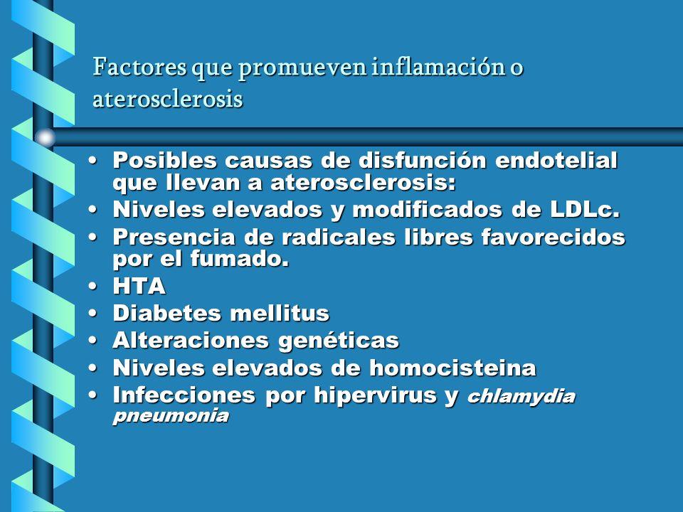 Factores que promueven inflamación o aterosclerosis Posibles causas de disfunción endotelial que llevan a aterosclerosis:Posibles causas de disfunción