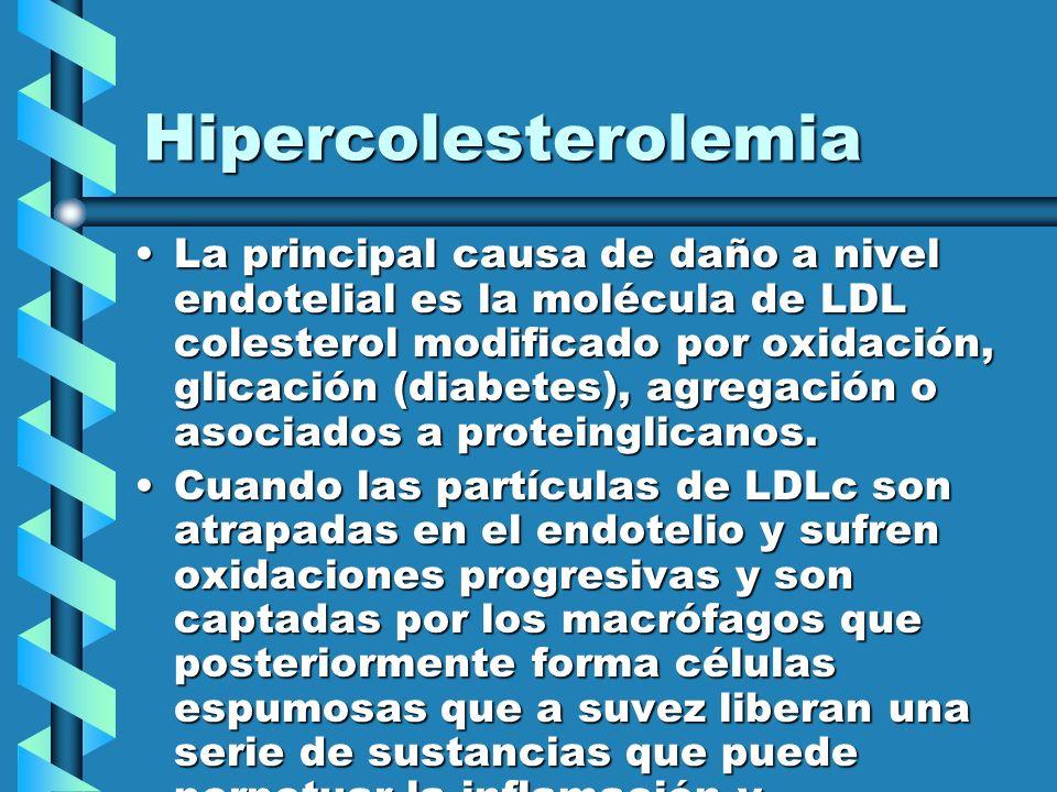 Hipercolesterolemia La principal causa de daño a nivel endotelial es la molécula de LDL colesterol modificado por oxidación, glicación (diabetes), agr
