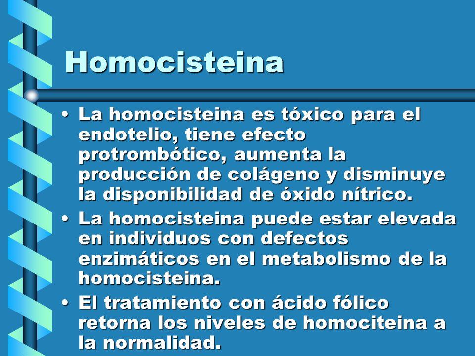Homocisteina La homocisteina es tóxico para el endotelio, tiene efecto protrombótico, aumenta la producción de colágeno y disminuye la disponibilidad