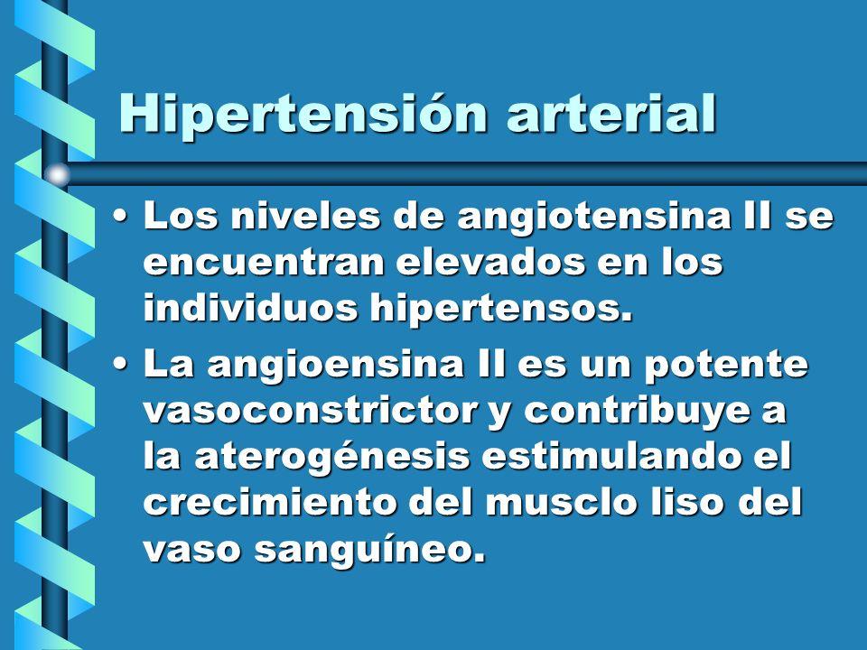 Hipertensión arterial Los niveles de angiotensina II se encuentran elevados en los individuos hipertensos.Los niveles de angiotensina II se encuentran