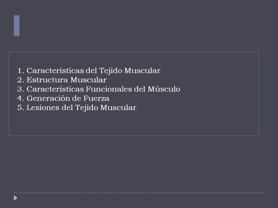 1. Características del Tejido Muscular 2. Estructura Muscular 3. Características Funcionales del Músculo 4. Generación de Fuerza 5. Lesiones del Tejid