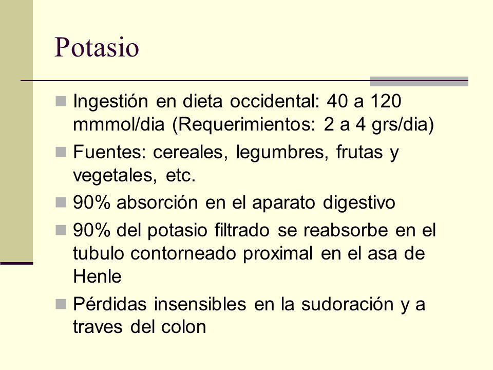 Potasio Ingestión en dieta occidental: 40 a 120 mmmol/dia (Requerimientos: 2 a 4 grs/dia) Fuentes: cereales, legumbres, frutas y vegetales, etc. 90% a