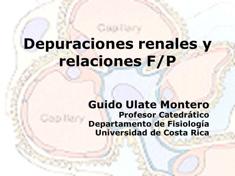 Depuraciones renales y relaciones F/P Guido Ulate Montero Profesor Catedrático Departamento de Fisiología Universidad de Costa Rica