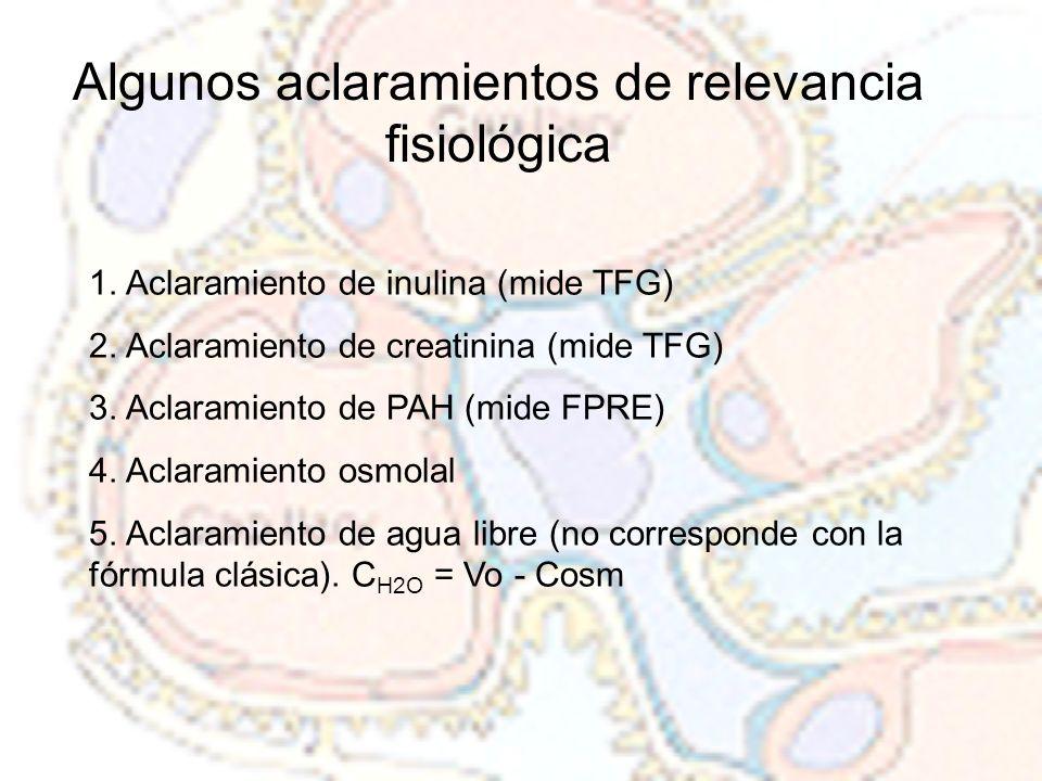 Algunos aclaramientos de relevancia fisiológica 1. Aclaramiento de inulina (mide TFG) 2. Aclaramiento de creatinina (mide TFG) 3. Aclaramiento de PAH