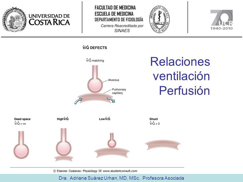 Dra. Adriana Suárez Urhan, MD, MSc, Profesora Asociada Relaciones ventilación Perfusión