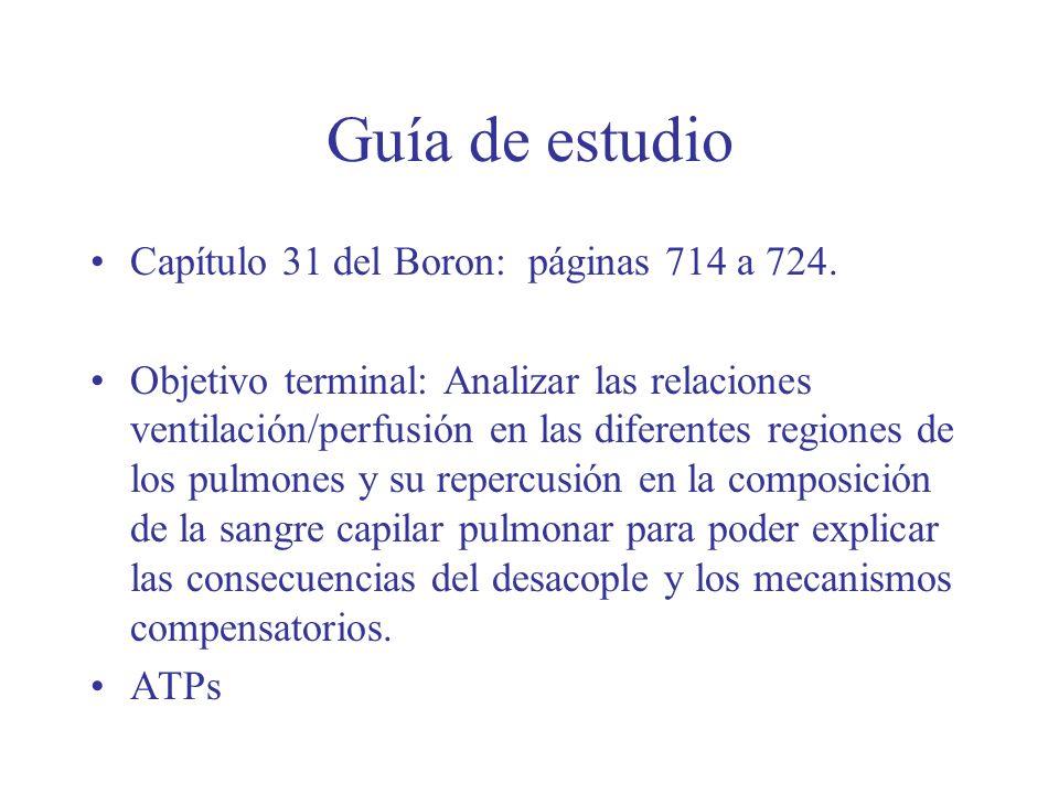 Guía de estudio Capítulo 31 del Boron: páginas 714 a 724. Objetivo terminal: Analizar las relaciones ventilación/perfusión en las diferentes regiones