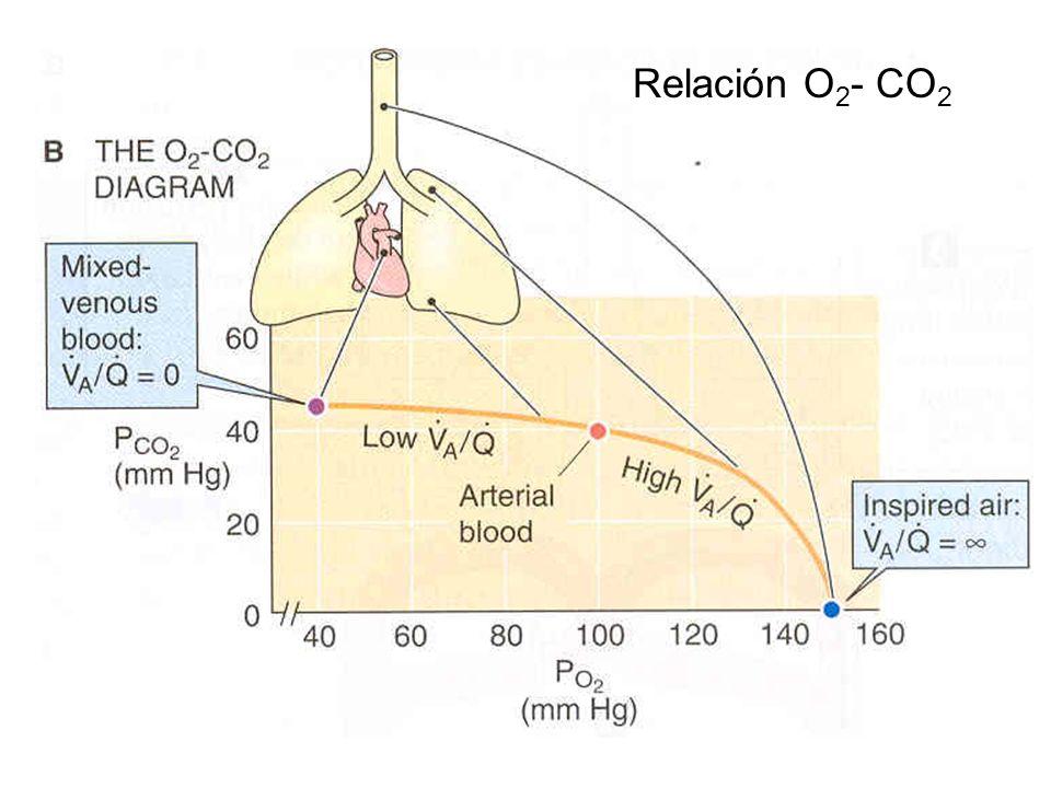 Relación O 2 - CO 2