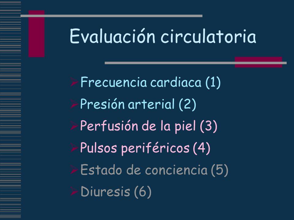 Evaluación circulatoria Frecuencia cardiaca (1) Presión arterial (2) Perfusión de la piel (3) Pulsos periféricos (4) Estado de conciencia (5) Diuresis