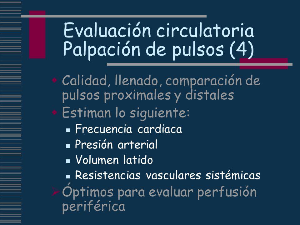 Evaluación circulatoria Palpación de pulsos (4) Calidad, llenado, comparación de pulsos proximales y distales Estiman lo siguiente: Frecuencia cardiac